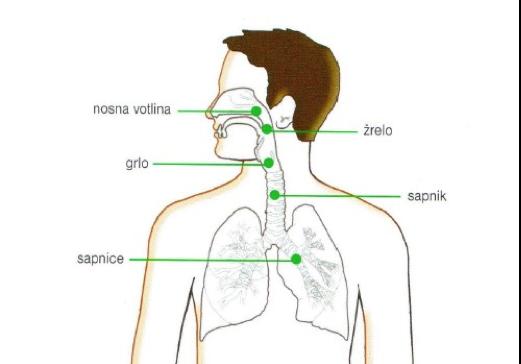 Boleče grlo lahko vpliva na celoten dihalni sistem